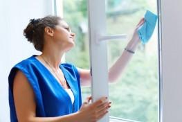 Le nettoyage spécifique de la vitrerie