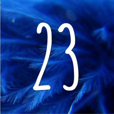 Jour 23 calendrier de l'avent du CLPS : 1980-2020 - les 40 ans du CLPS au service du développement des compétences et de la promotion sociale